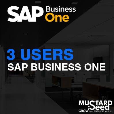 3 User SAPB1 SAP philippines