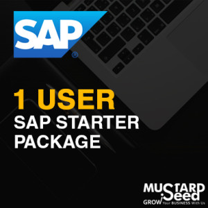 1 User Starter SAP Philippines