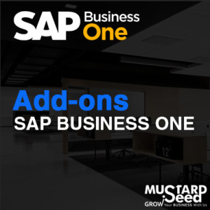 SAP Business One Add-ons MSSC
