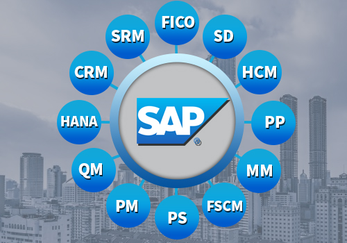 SAP Modules | SAP Philippines | Mustard Seed Systems Corporation