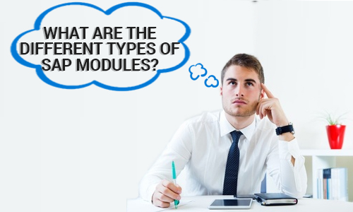 What are the different types of SAP Modules?